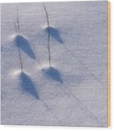 Snow II Wood Print