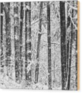 Snow In A Forest Wood Print
