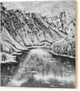 Snow In November Black And White Wood Print
