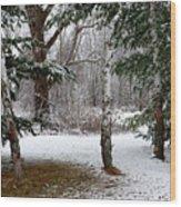 Snow In Pines Wood Print