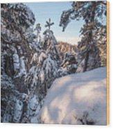 Snow In Saxon Switzerland Wood Print