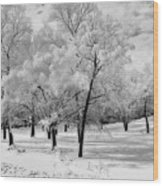 Snow In South Park Wood Print