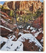 Snow In The Canyons Wood Print