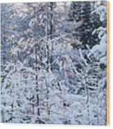 Snow In The Forest Wood Print
