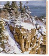 Snow In The Park Acadia Maine Wood Print