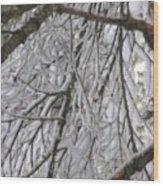 Snow In Yosemite Wood Print