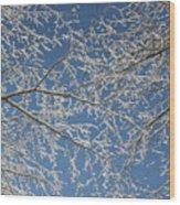 Snow Lined Limbs Wood Print
