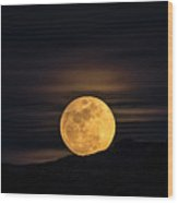 Snow Moon Rising  Wood Print