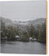 Snow On Cedars Wood Print