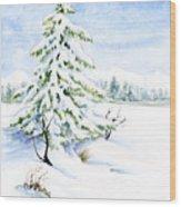 Snow On Evergreens Wood Print