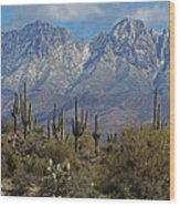 Snow On Four Peaks Arizona No Snow On Saguaros Wood Print