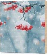 Snow On Red Berries Wood Print