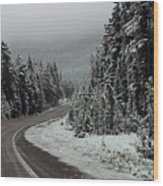 Snow On Road Through Forest Wood Print by Linda Phelps