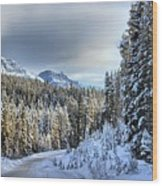 Snow On The Bow Valley Parkway Wood Print