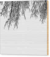 Snow On The Branches Two  Wood Print