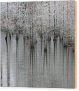 Snow On The Cypresses Wood Print