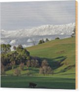Snow On The Great Western Tiers, Tasmania Wood Print