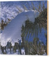 Snow Ornament - Joshua Tree Wood Print
