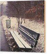 Snow Park Bench Wood Print