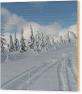 Snow Pass Bc High Country Wood Print