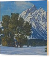 Snow Plume-cathedral Group Wood Print