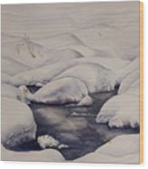 Snow Pool Wood Print