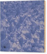 Snow Prints Wood Print
