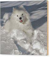 Snow Queen Wood Print