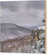 Snow Remoteness Wood Print
