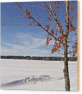 Snow Ripple Wood Print