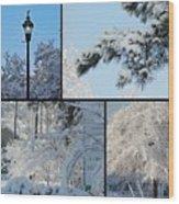 Snow Scenes Of Charleston Sc Wood Print