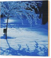 Snow Shadows Wood Print