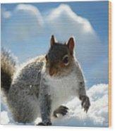 Snow Squirrel Wood Print