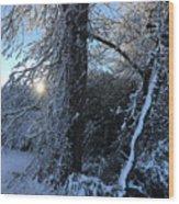 Snow Sunrise 2 Wood Print