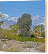 Snow-topped Mountains From Tahquitz Canyon Way In Palm Springs-california  Wood Print