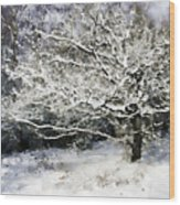 Snow Tree Wood Print