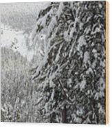 Snow, Trees, Yellowstone Wood Print