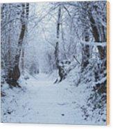 Snow Walk Wood Print