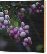 Snowberry 5191 H_2 Wood Print