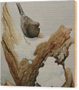 Dark-eyed Junco Wood Print