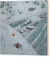 Snowbird Steeps Wood Print