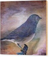 Snowbird Stories... Wood Print
