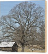 Snowcapped Tobacco Shed Wood Print