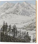 Snowdonia Wood Print