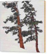 Snowdrift Wood Print