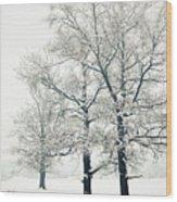 Snowed Wood Print by Gabriela Insuratelu