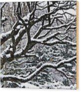 Snowfall And Tree Wood Print