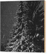 Snowfall Wood Print