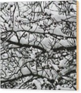 Snowfall On Branches Wood Print