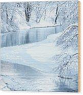 Snowfall On Gauley Wood Print